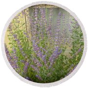 The Lavender Outside Her Window Round Beach Towel
