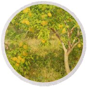 The Lemon Tree Round Beach Towel