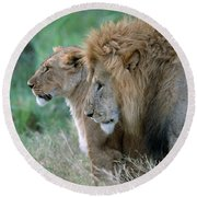 The Lion And His Lioness Round Beach Towel