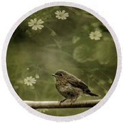 The Little Robin Round Beach Towel