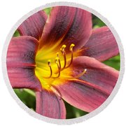 The Love Of Lilies Round Beach Towel