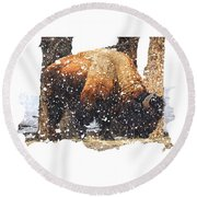 The Majestic Bison Round Beach Towel