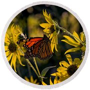 The Monarch And The Sunflower Round Beach Towel