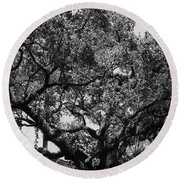 The Monastery Tree Round Beach Towel