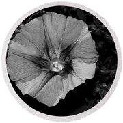 The Morning In Glory Round Beach Towel