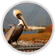 The Most Beautiful Pelican Round Beach Towel by Susanne Van Hulst