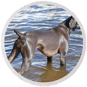 The Muddy Mississippi Round Beach Towel