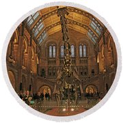 The Museum Of Natural History... London Round Beach Towel