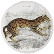 The Naturalist Library Round Beach Towel