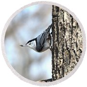 The Nuthatch Round Beach Towel