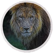 The Old Lion Round Beach Towel