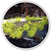 The Old Mossy Flume Round Beach Towel