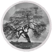 The Old Oak Tree Standing Alone  Round Beach Towel