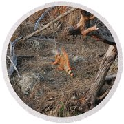 The Orange Iguana Round Beach Towel