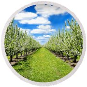 The Orchard Round Beach Towel
