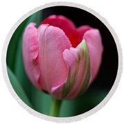 The Peculiar Pink Tulip Round Beach Towel