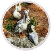 The Pelican Clan Round Beach Towel