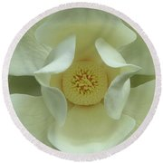 The Perfect Opening Magnolia Flower Art Round Beach Towel