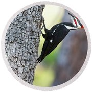 The Pileated Round Beach Towel