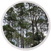 The Pines Of Tallahassee Round Beach Towel