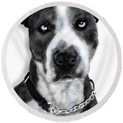The Pooch With Blue Eyes Round Beach Towel