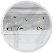 The Procession 8018 Round Beach Towel