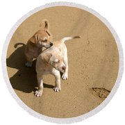 The Puppies Round Beach Towel