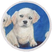 The Pups 1 Round Beach Towel