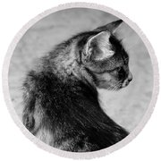 The Purrfect Glance Back Round Beach Towel