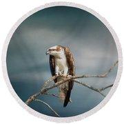 The Raptor - Osprey Round Beach Towel