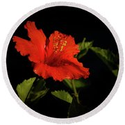 The Red Hibiscus Round Beach Towel