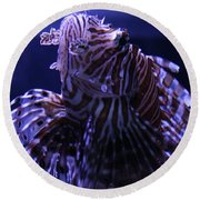 The Red Lionfish Round Beach Towel