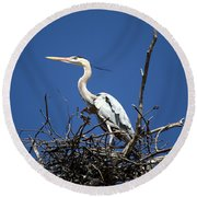 The Rookery Round Beach Towel