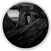 The Roots Of The Sleeping Giant Bw Round Beach Towel
