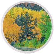 The Sanctity Of Nature Reified Through A Photographic Image  Round Beach Towel