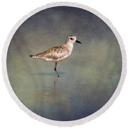 The Sanderling 2 By Darrell Hutto Round Beach Towel