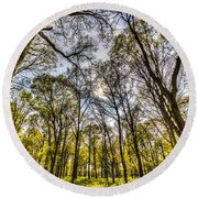 The Silent Forest  Round Beach Towel