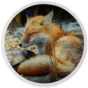 The Sleepy Fox Round Beach Towel