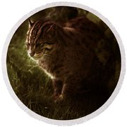 The Sleepy Wild Cat Round Beach Towel