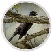 The Song Of Nature Round Beach Towel