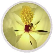 The Southern Magnolia Round Beach Towel