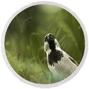The Sparrow Round Beach Towel