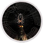 The Spider  And The Fly Round Beach Towel