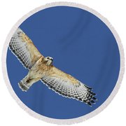 The Spirit Of The Hawk Round Beach Towel