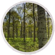 The Sun Touched Forest Round Beach Towel