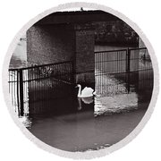The Swan Story Round Beach Towel