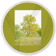 The Sycamore Round Beach Towel