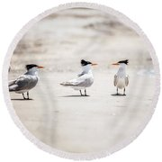 The Talking Terns Round Beach Towel