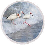 The Tide Of The Ibises Round Beach Towel