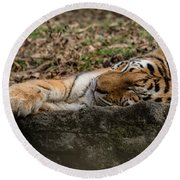The Tiger's Rock  Round Beach Towel